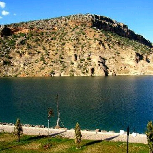 amed_221